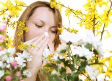 asma allergia