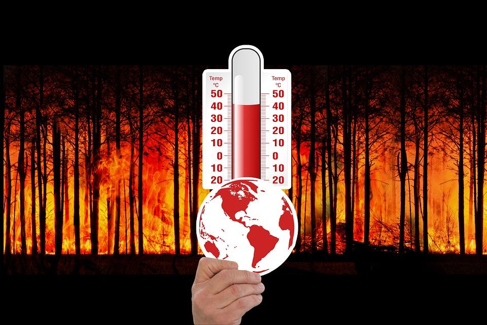 caldo cambiamento climatico