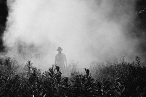 nebbia da pesticidi