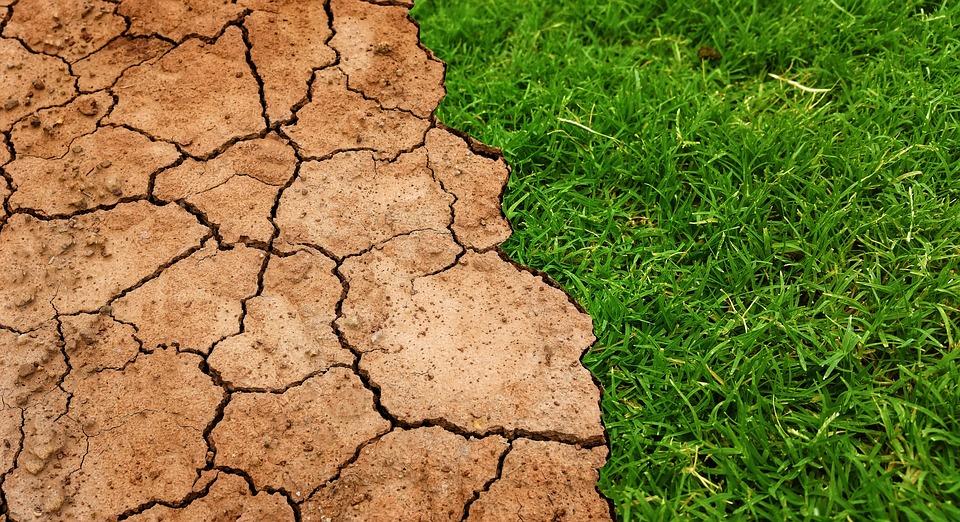Giustizia, l'appello degli ambientalisti: no a colpo di spugna su delitti ambientali