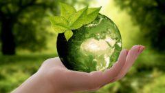 mano regge pianeta terra verde