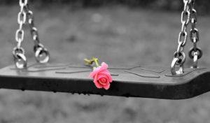rosa su un'altalena