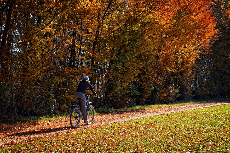 bici in autunno