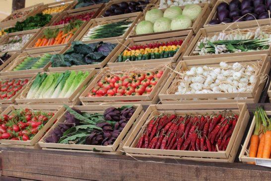 Spreco di cibo, viene buttato il 17% di tutto quello disponibile