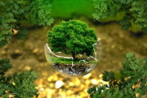 Petizione degli ambientalisti