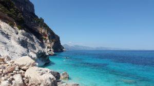 Common Mediterraneo