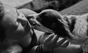 cane affetto