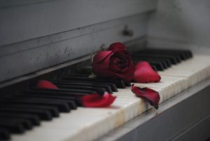 pianoforte e rose