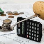 Pil, Istat: +0,1% nel primo trimestre 2021, calano i consumi