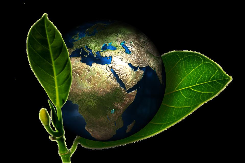Giornata Mondiale dell'Ambiente, le iniziative di Legambiente