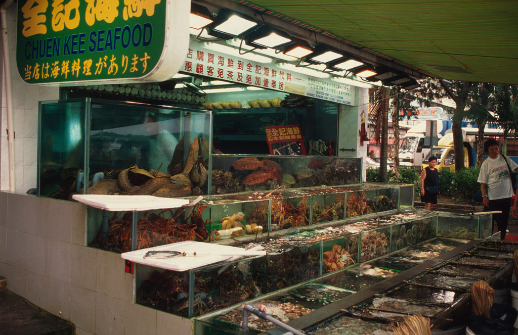 Hong Kong ©-Meg-Gawler-WWF