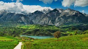 Floranetlife-Le gite di primavera in un click