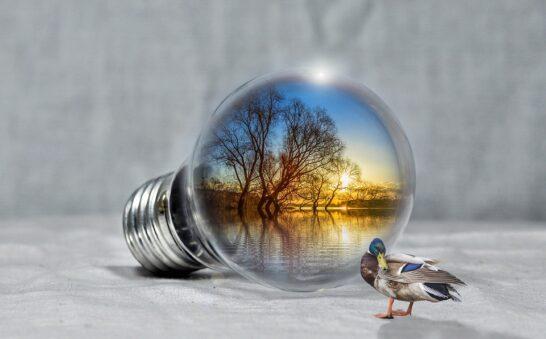 Sviluppo sostenibile, oggi la Giornata Globale di Azione per la Giustizia Climatica