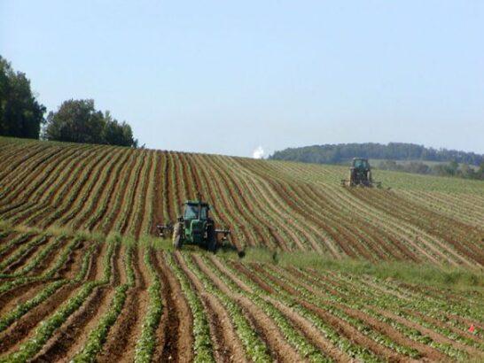 Sistemi alimentari e cambiamenti climatici, 16 azioni per uno sviluppo sostenibile