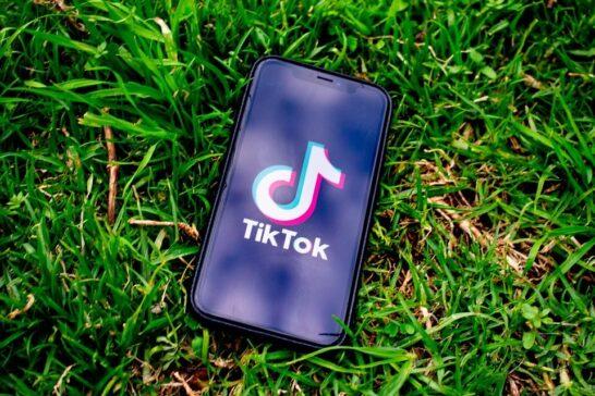 TikTok e tutela dei minori, il Garante Privacy dispone il blocco del social