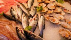 Al via il progetto RI-PESCATO, per la distribuzione del pesce confiscato