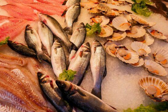 """Al via il progetto """"RI-PESCATO"""", per distribuire alle persone bisognose il pesce confiscato"""