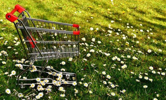 Abitudini di consumo, l'eco-sostenibilità sarà la carta vincente post Covid?