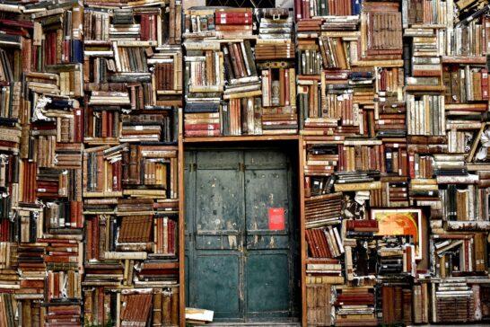 Libri, nel 2020 aumentano i lettori digitali, ma la libreria resiste