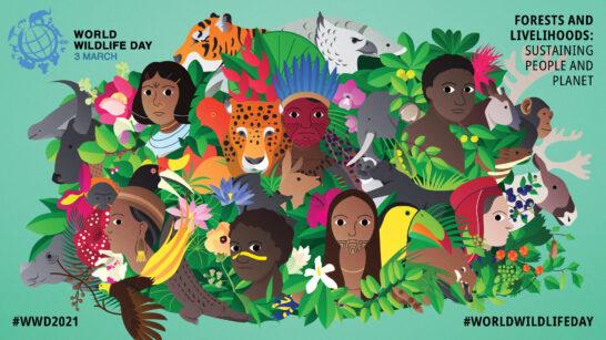 Giornata Mondiale della Fauna Selvatica, Legambiente: tutelare le specie a rischio