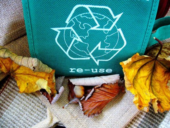 Giornata del riciclo, CONAI: arriva al 71% il riciclo degli imballaggi