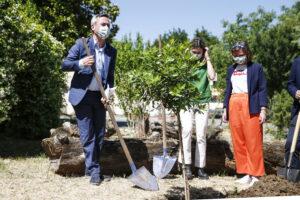 Un piccolo gesto per curare l'ambiente - Foto Cecilia Fabiano/ LaPresse