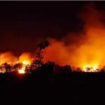 Incendio in Sardegna, Legambiente: agire su prevenzione e controlli